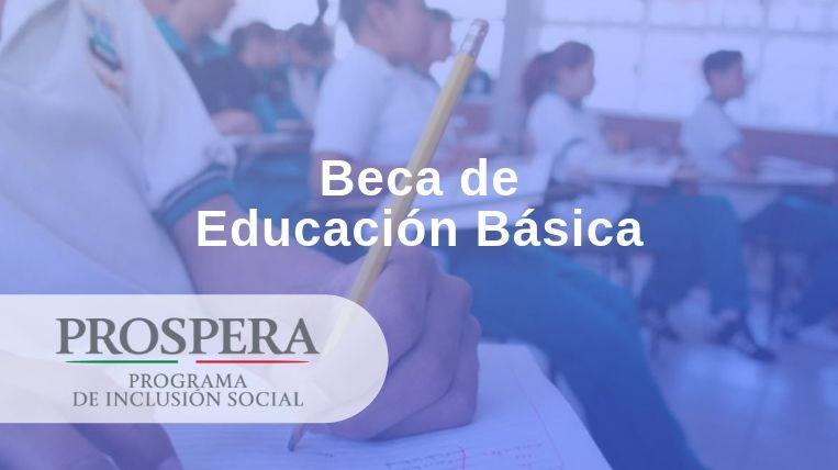 Beca de educación básica