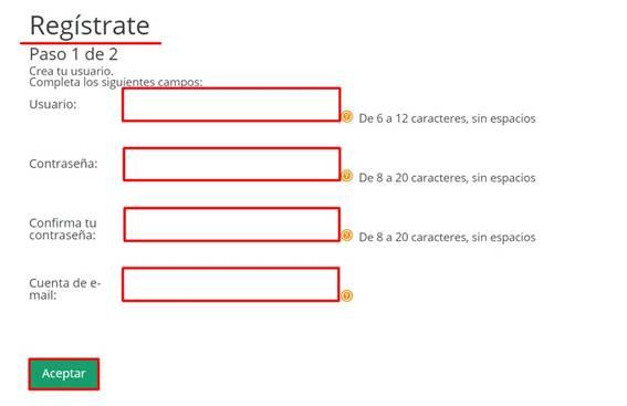 pasos para llenar formulario para consultar el CFE