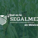SEGALMEX mexico